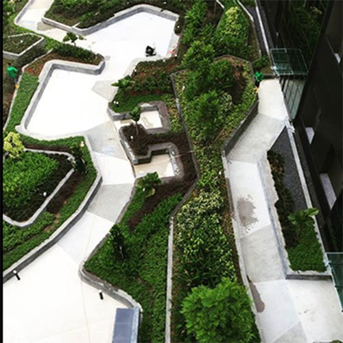 top view of landscape